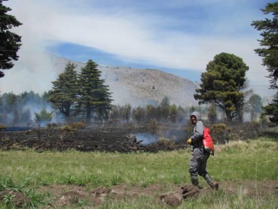 Incendio en el Parque Tornquist