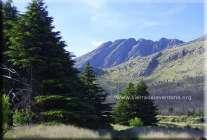 Los Cerros
